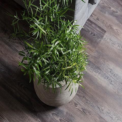 VIVA Floors Click PVC WPC PVC Pine 4440