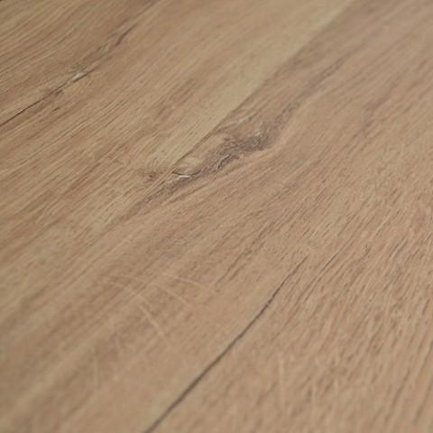 forest laminaat tulip oak 8mm 4v laminaat lab21. Black Bedroom Furniture Sets. Home Design Ideas